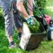 Landscaping Adds Value to Your Property