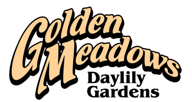 Golden Meadows Garden Design & Daylilies